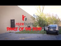 Rozebuds Kickstarter Video: Dance of the Dead